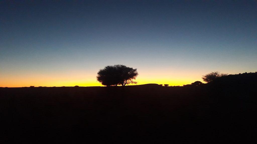 Le Sahara Occidental nous ouvre les bras